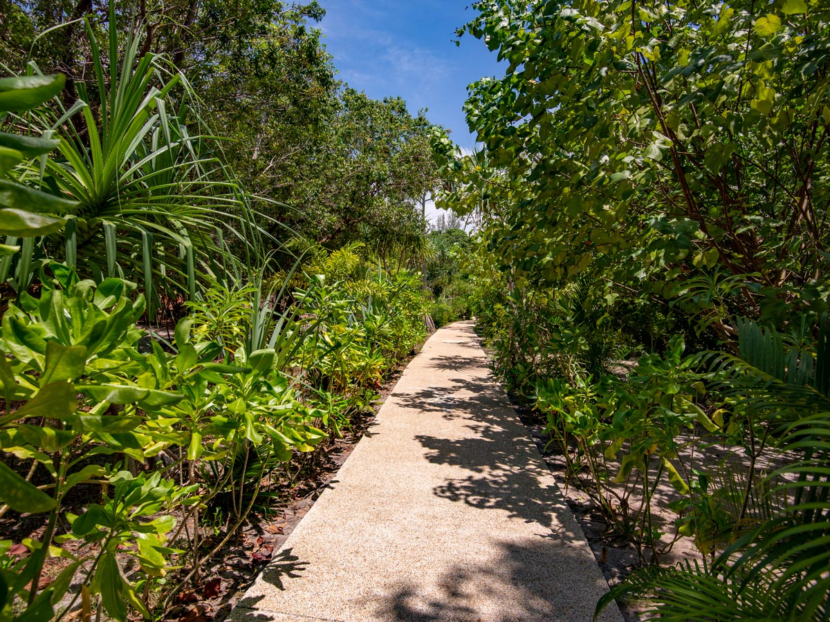 Pathway leading through the resort at Koh Jum Beach Villas