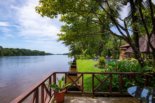 Tortuguero, Costa Rica: Where to stay and what to do